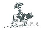 Dorothy cow